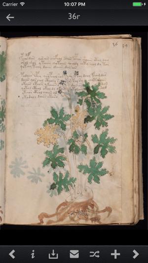 Voynich Manuscript Kit Screenshot