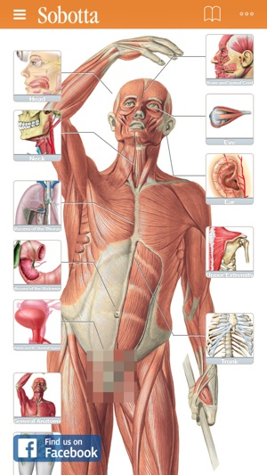 ‎Sobotta Anatomy Atlas