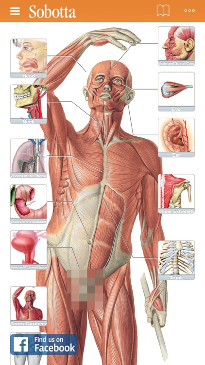 Sobotta Anatomy Atlas By Elsevier Gmbh