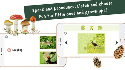 Screenshot #10 for Sami Tiny FlashCards forest adventures kids apps