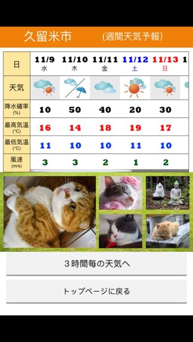 みんなのにゃんこ天気〜天気予報+猫写真で毎日に少しほっこり〜紹介画像4