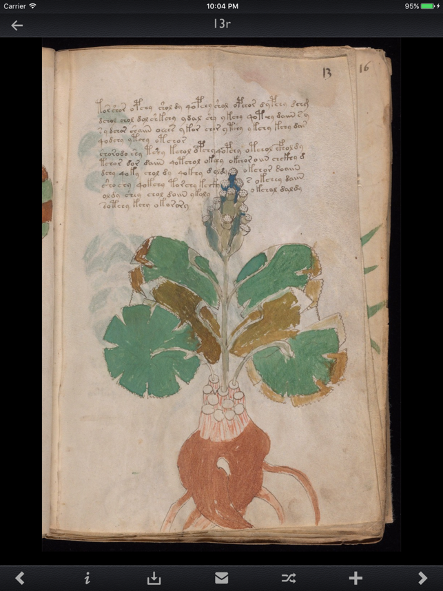 Voynich Manuscript Kit Screenshot