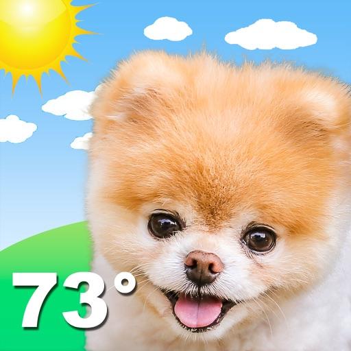 Boo Weather