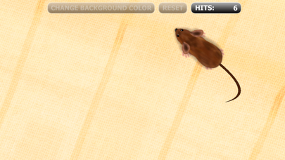 Catch The Mouse Cat Game For Iphone review screenshots