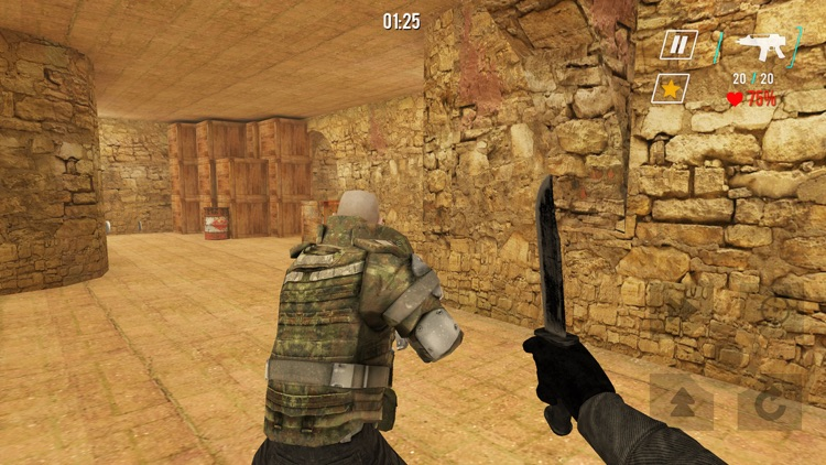 Counter SWAT Forces screenshot-4