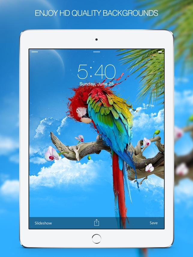 Color Splash Wallpapers & Splash Pictures HD Screenshot