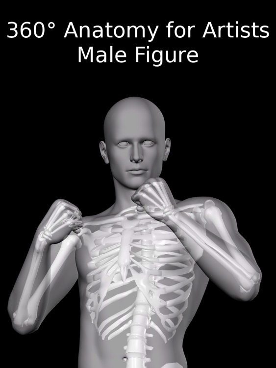 360 Anatomy for Artists HD: Male Figure