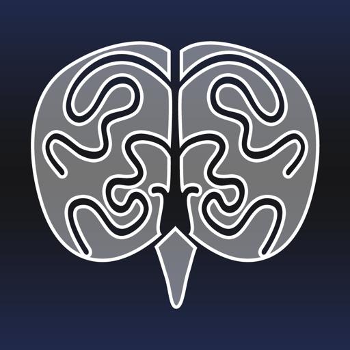 Build-A-Brain Explorer