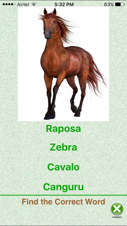 Flashcards Portuguese Lesson screenshot-4