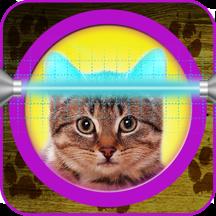 猫星术的应用程序:你的宠物的占星术