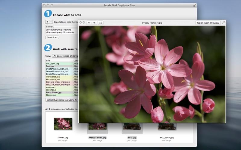 Araxis Find Duplicate Files Screenshot