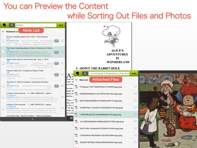 EverCrane for iPad - FileCrane for Evernote screenshot-3