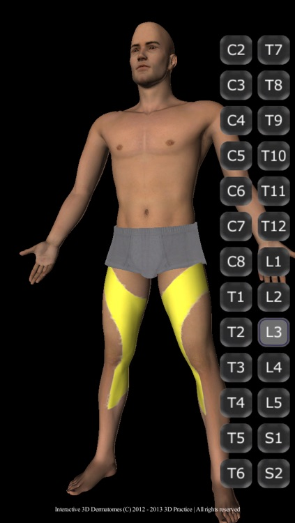 Interactive 3D Dermatomes screenshot-4