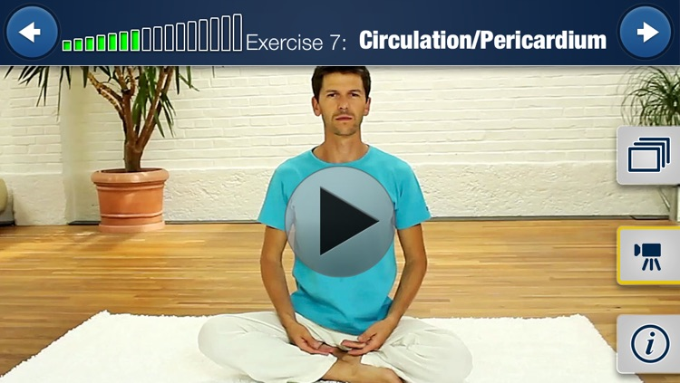 Meridian Yoga HD 15 Min. Training screenshot-3