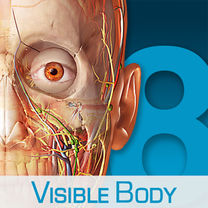 Human Anatomy Atlas – 3D Anatomical Model of the Human Body app