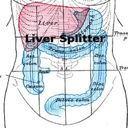 Liver Splitter