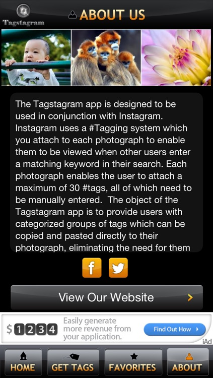 Tagstagram Lite - Copy and Paste Tags for Instagram screenshot-3
