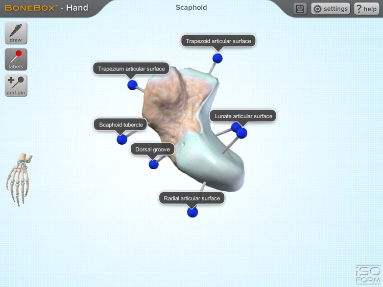 BoneBox™ - Hand Viewer screenshot-3