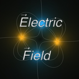 Electrostatic Fields