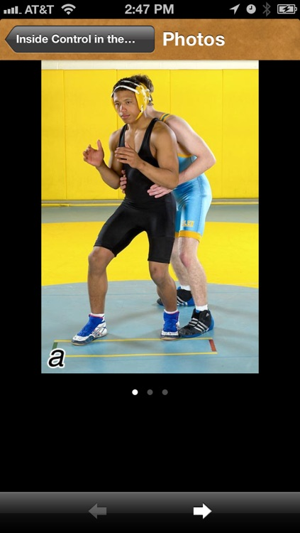 Wrestling Drills screenshot-4