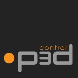 P3D Control