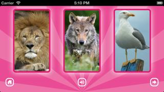 GRoink, GRoink: 動物の鳴き声で遊ぼう!のおすすめ画像4