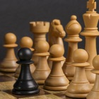 Chess Strategy - Learn How To Play Chess and Win icon