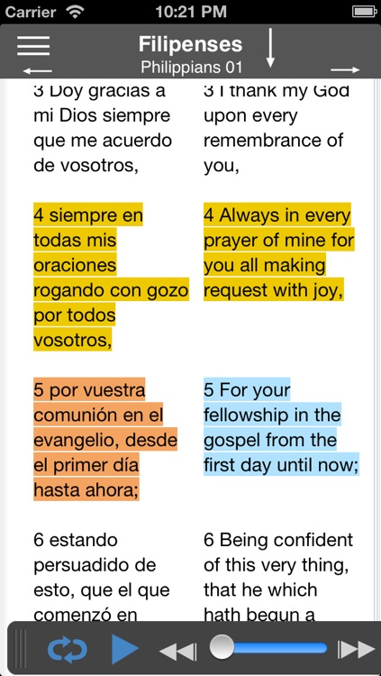 Santa Biblia Audio screenshot-3