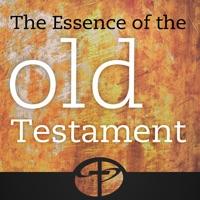 Codes for Old Testament Survey - Essence of the Old Testament Hack