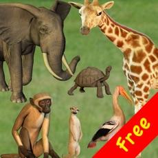 Activities of Click! Zoo Free