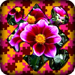 Flowers, Gardens & Orchards Living Jigsaws & Puzzle Stretch