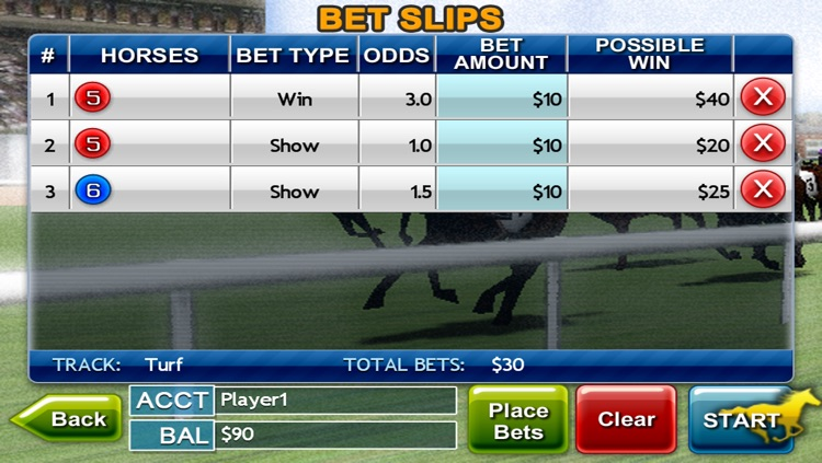 Virtual Horse Racing 3D Lite screenshot-3
