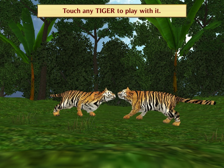 Magic Boox: Jungle Safari screenshot-4