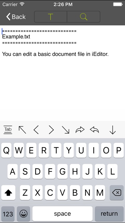 iEditor Pro – Text Code Editor screenshot-1