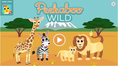 Peekaboo Wild review screenshots