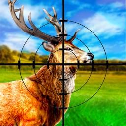 African Safari Deer Hunter Season 2016
