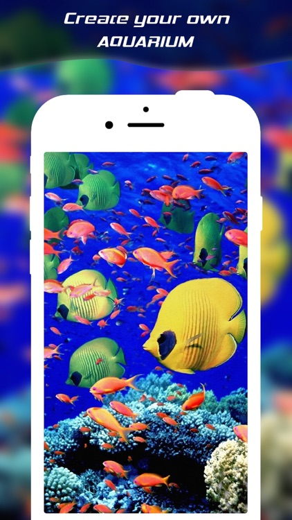Live Wallpaper Maker For Photo Convert Any And. Screenshots Of Aquarium Live Wallpaper For Iphone