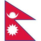 Flag Check icon