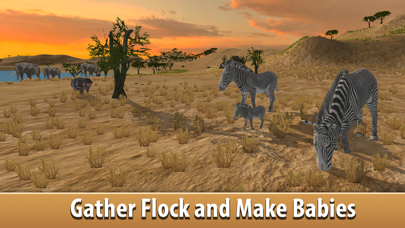Zebra Simulator 3D - African Horse Survival screenshot one