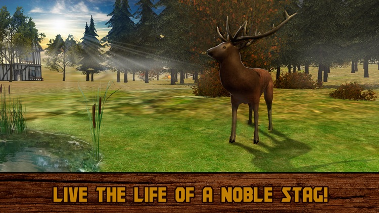 Forest Deer: Wild Survival