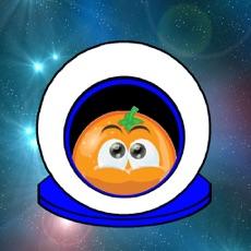 Activities of Fruits in Space