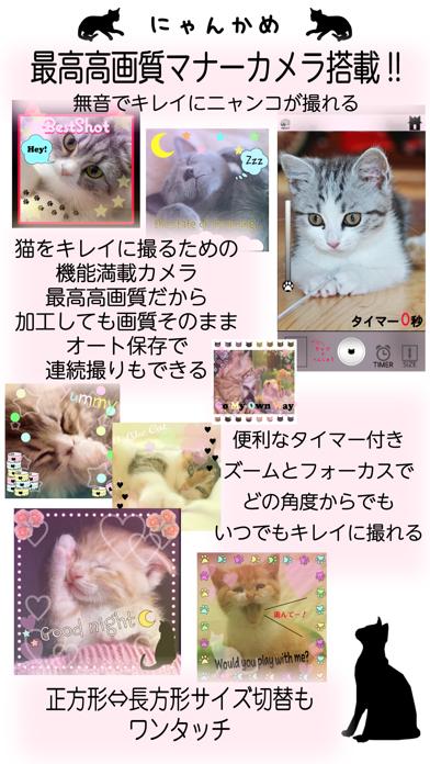 にゃんかめ 高画質マナー(無音)カメラ 〜猫のためのデコアプリ〜のおすすめ画像1