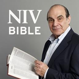 NIV Audio Bible: read by David Suchet