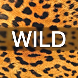 Wild Wallpaper and Lock Screens for iPhone