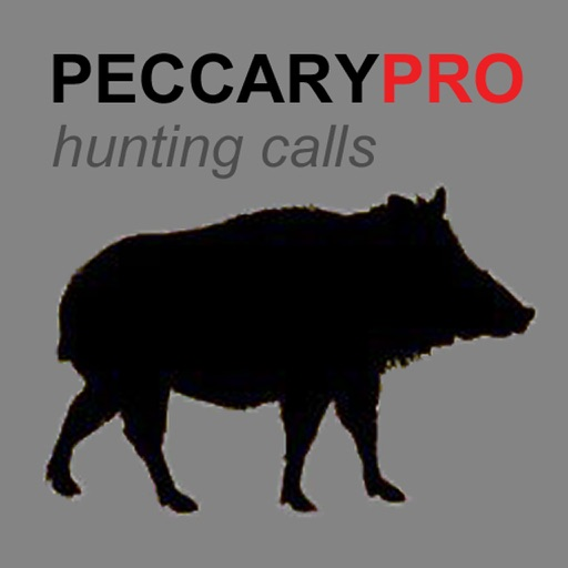 REAL Peccary Calls and Peccary Sounds for Hunting Call