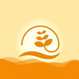 河南副食品行业