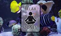 Clownfish Aquarium by Relax Zones
