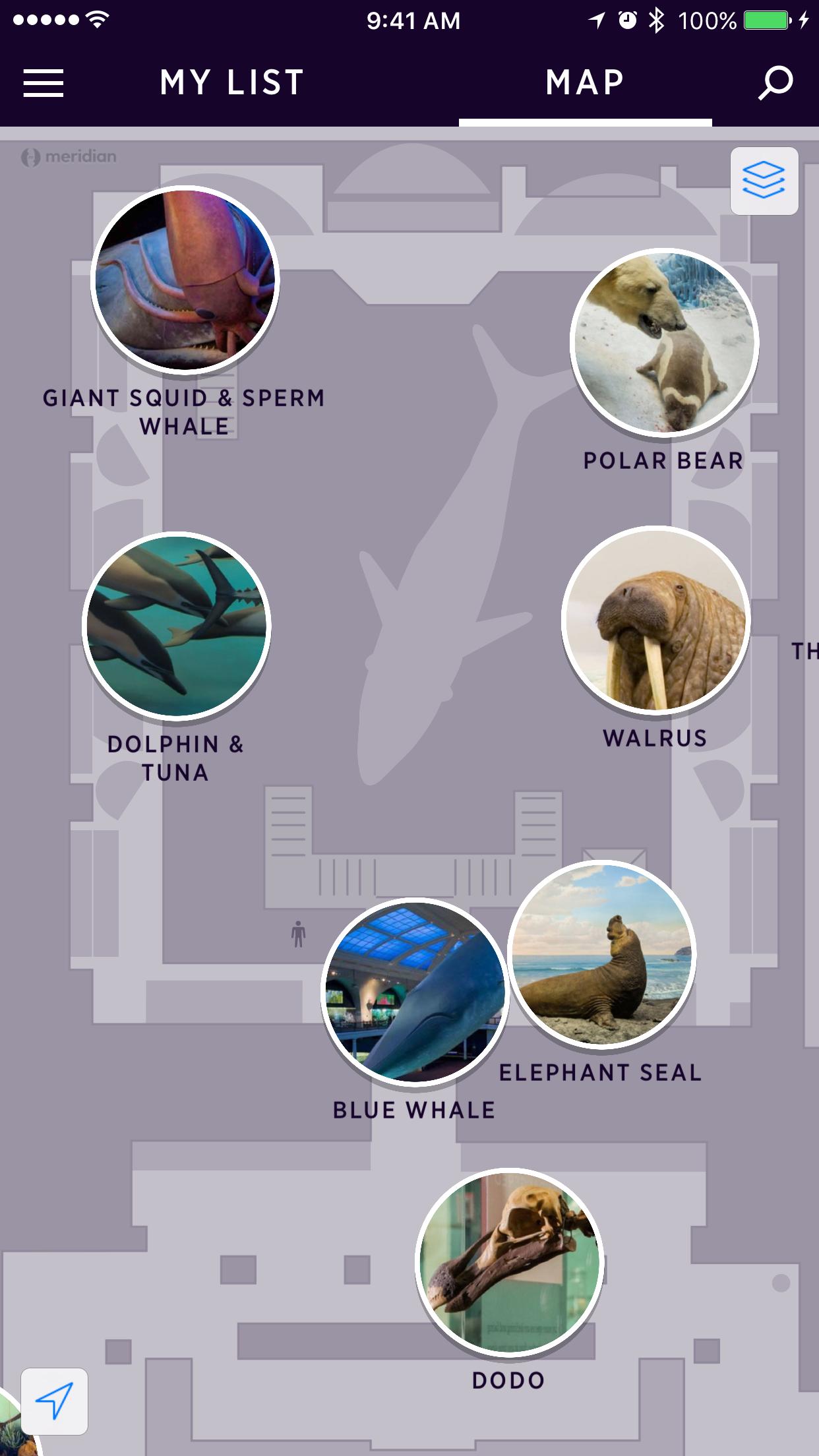 Explorer - AMNH NYC Screenshot