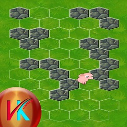 Lock The Pig By Arranging The Stones