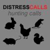 REAL Distress Calls for PREDATOR Hunting - 15+ REAL Distress Calls! BLUETOOTH COMPATIBLE